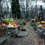 alejka cmentarza